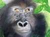 Silberrücken Gorilla - Kreide und Acryl auf Papier